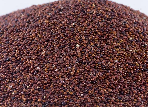 Quinoa Roja en Grano
