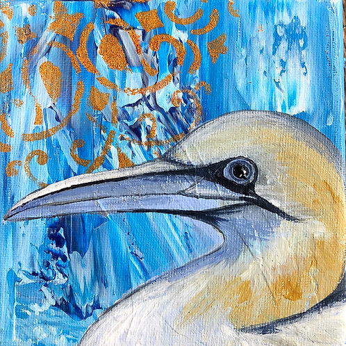 Gannet on canvas