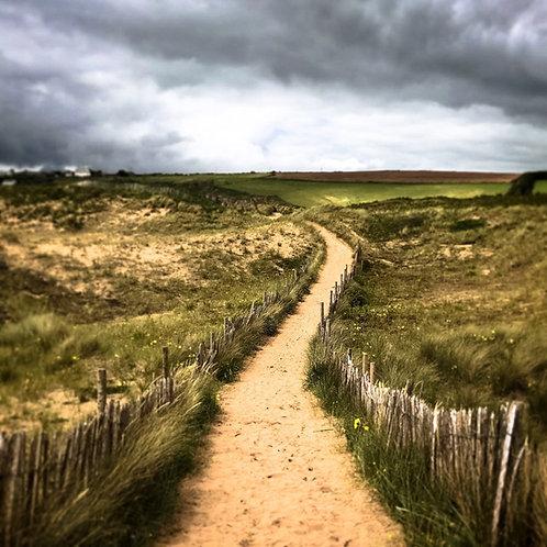 Bantham Dunes