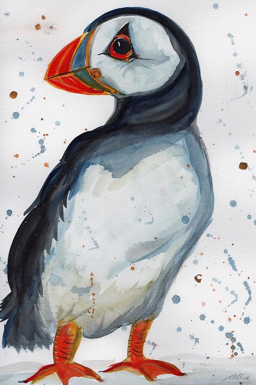 Watercolour Puffin