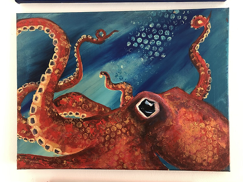 Spotted an Octopus