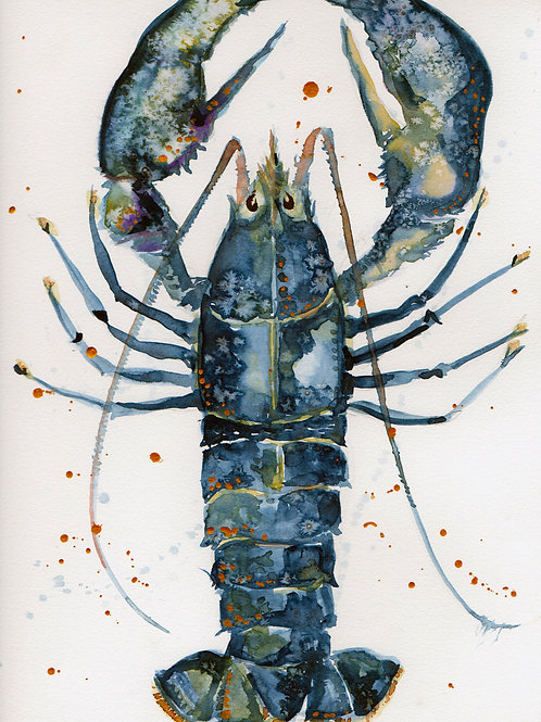 Watercolour Lobster