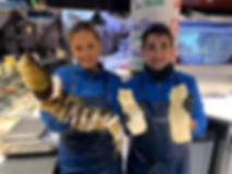Lutefisk og krusetorsk.jpg