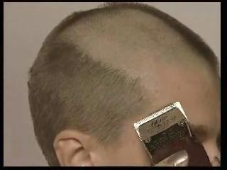 bald27