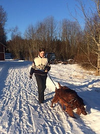 Långer promenader i vinterlandskapet på vårt dagis på Alnö