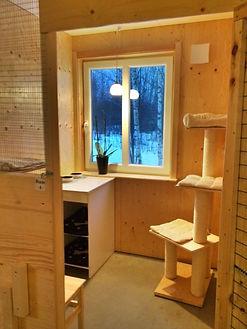 Standardrum Kattpensionat Sundsvall