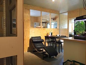 Alla kattrum ligger runt det hemtrevliga vardagsrummet Kattpensionat Sundsvall