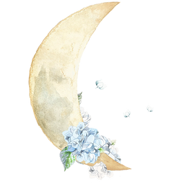 new moon with hydragea.png