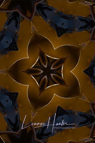 Kelp Abstract 2