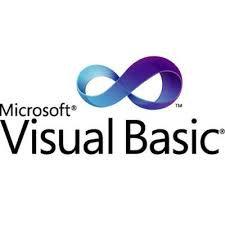 Youth Visual Basic Programming