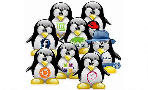 Youth Linux Programming