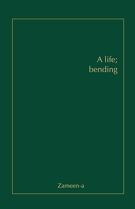 book pic.jpg