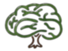 Updated_Brain_Tree(larger).png