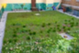 Bronx-Design-Construction-Academy-Green-