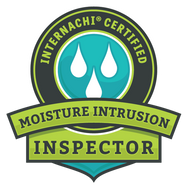 True Vision Home Inspection Moisture