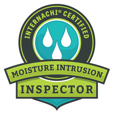 True Vision Home Inspection Moisture