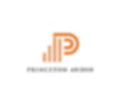 Princeton Audio Logo.png