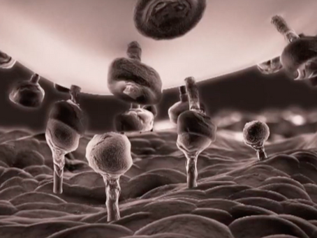 The Strange World of Weaponized Pathogens and Nanotech - updated April 2021