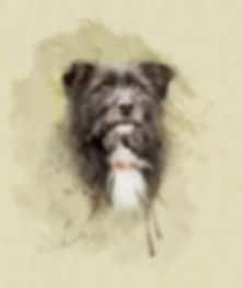 dog painted portrait.jpg