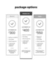 Pricing and Services Guide _ Laura Fello