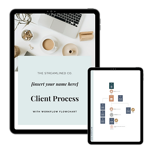 client-experience-graphic-laura-fellows-
