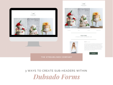 3 Ways to Create Sub-Headers within Dubsado Forms