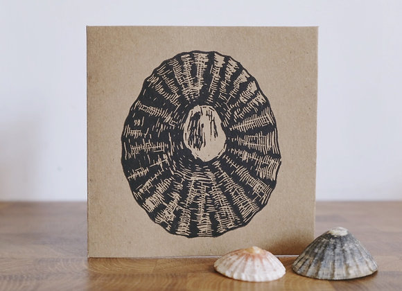 Northumbrian Limpet | Lino Print | Greetings Card
