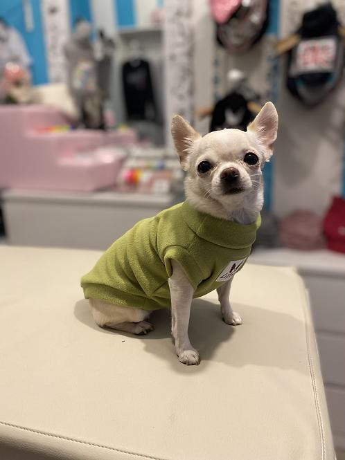 Maglioncino Chihuahua - Micropile Pistacchio