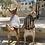 Thumbnail: T-shirt Chihuahua - PINK & SILVER STRIPES