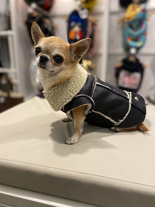 Shearling Vintage Chihuahua