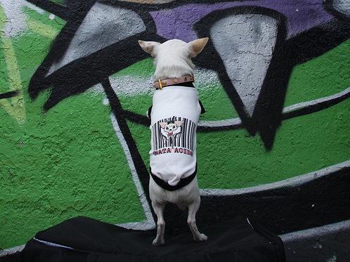 T-shirt Chihuahua Nata Acida