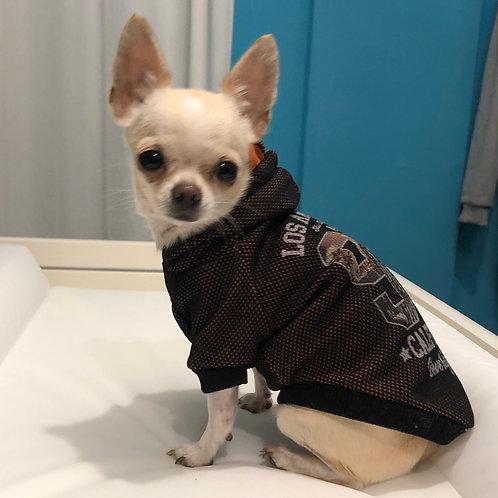 Felpa Chihuahua - California Dream
