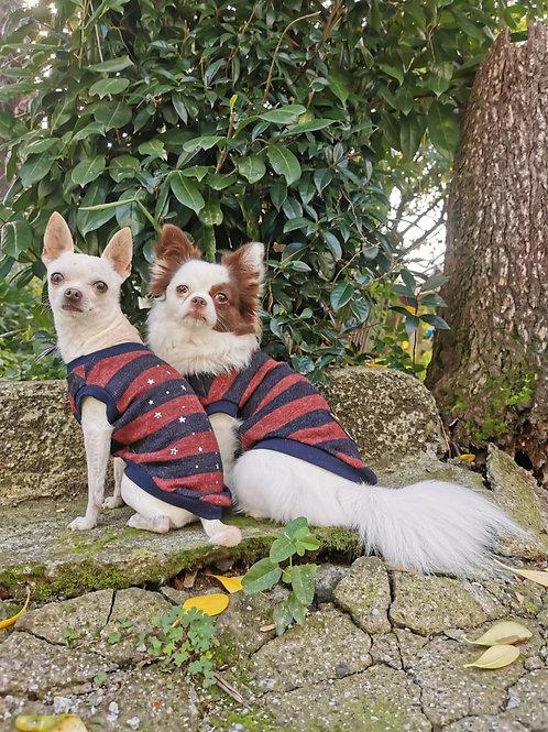 Maglioncino Chihuahua - stripes