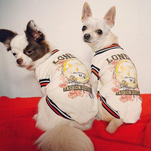 Felpa Chihuahua - London