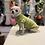 Thumbnail: Maglioncino Chihuahua - Micropile Pistacchio