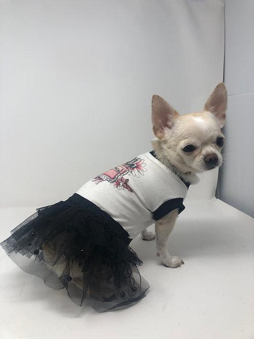 ABITO CHIHUAHUA - MISS DOG