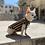 Thumbnail: T-shirt Chihuahua - GOLDEN STRIPES