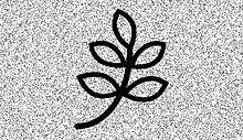 leaf%25204_edited_edited.jpg