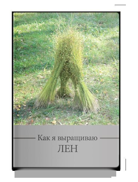 Шитова М.Г.  Как я выращиваю лён