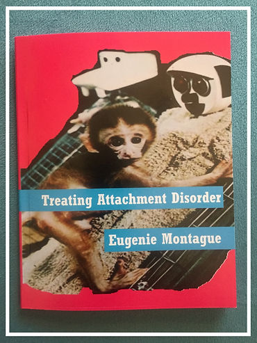 Eggtooth Editions Eugenie Montague Treating Attachment Disorder