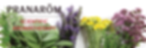 Prana Herb and Flower Image.png