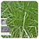 Thumbnail: Palmarosa, Organic