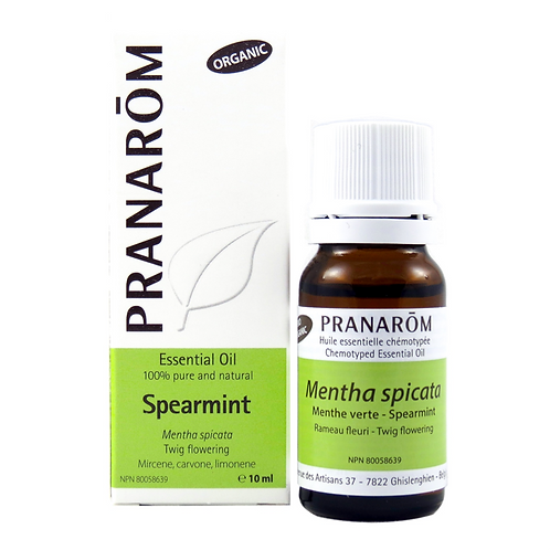 Spearmint, Organic