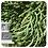 Thumbnail: Cypress, Organic