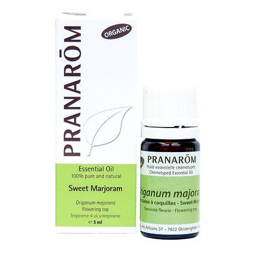 Sweet Marjoram, Organic