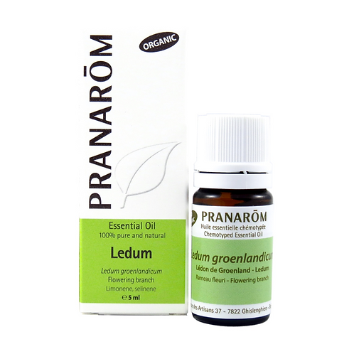 Ledum, Organic