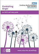 Controlling Anger cover.JPG