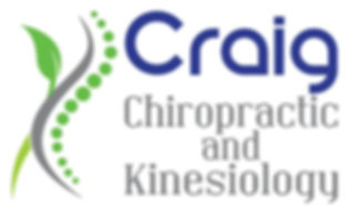 Applied Kinesiology, Chiropractor in Monticello, MN