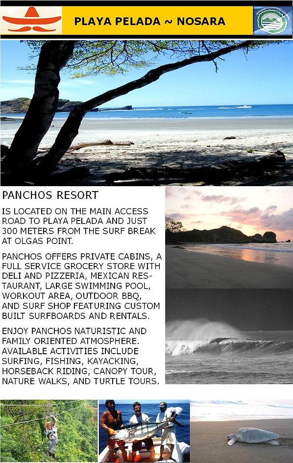 panchosweb-site2.jpg