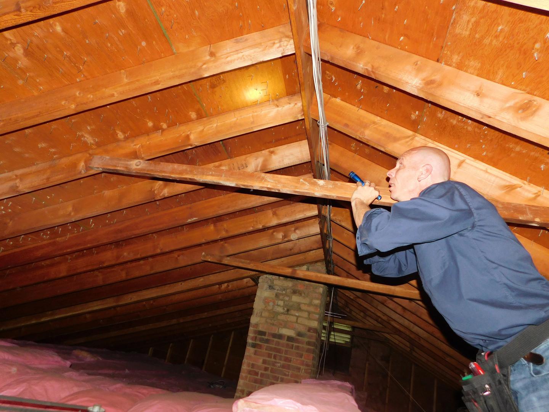 inspecting-attic.JPG